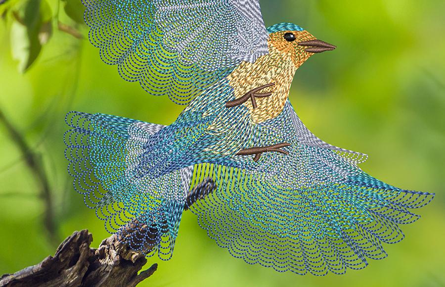 Spiral Fill Bluebird