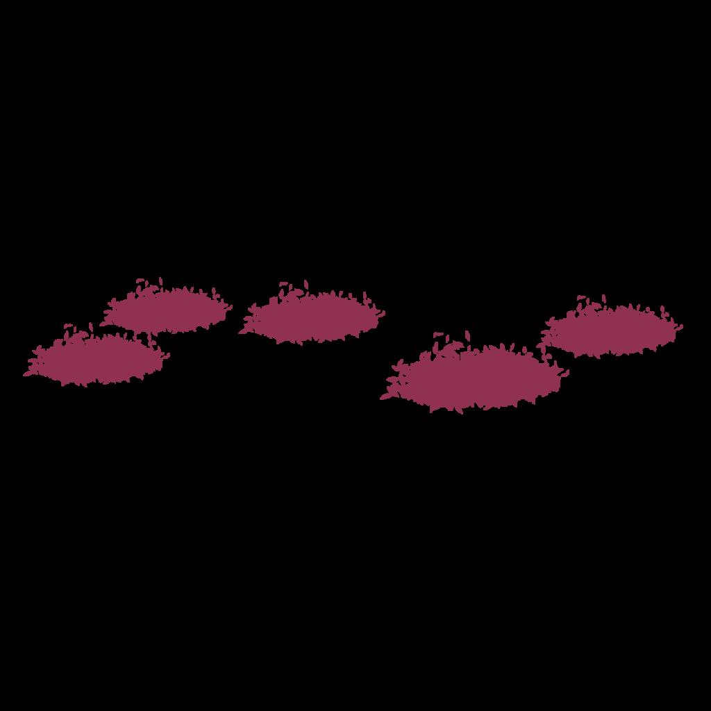 Cherry Blossom layer 1
